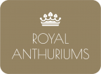 Royal Anthuriums Logo